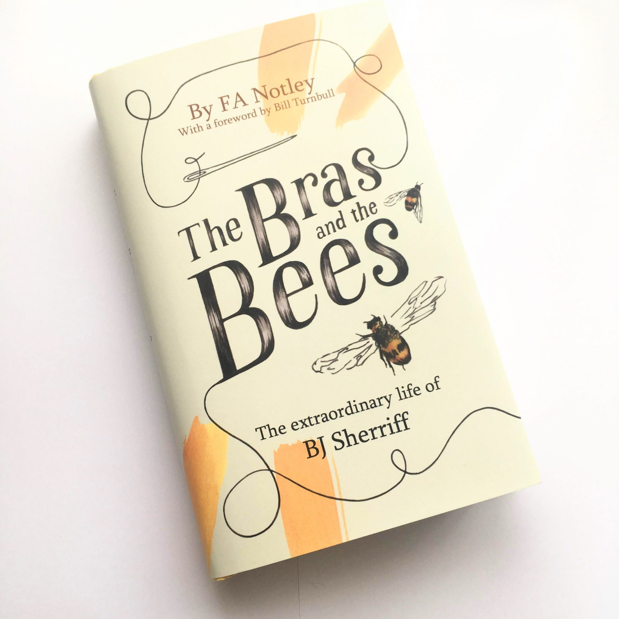 The Bras and the Bees - Winning Book Cover